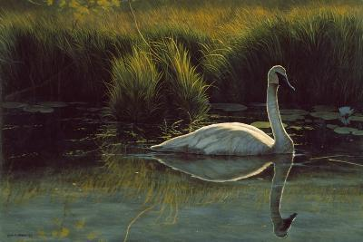 Reflections of Grace-Michael Budden-Giclee Print