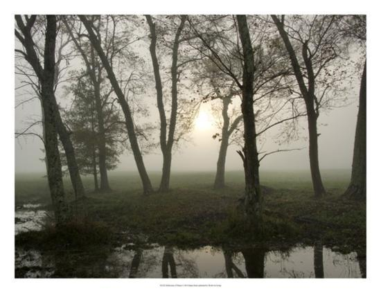 Reflections of Nature-Danny Head-Giclee Print