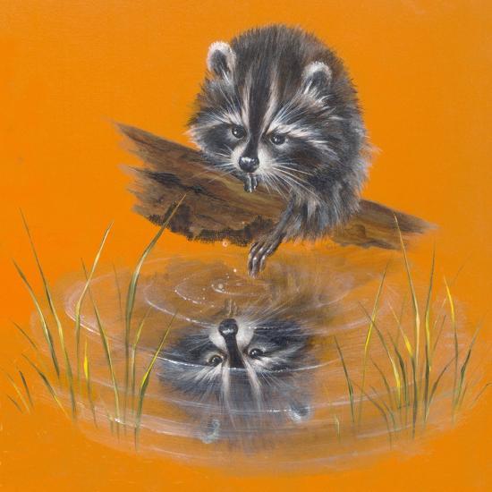 Reflective Racoon - 35A-Peggy Harris-Giclee Print