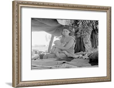 Refugees of the Drought of the Dust Bowl-Dorothea Lange-Framed Art Print
