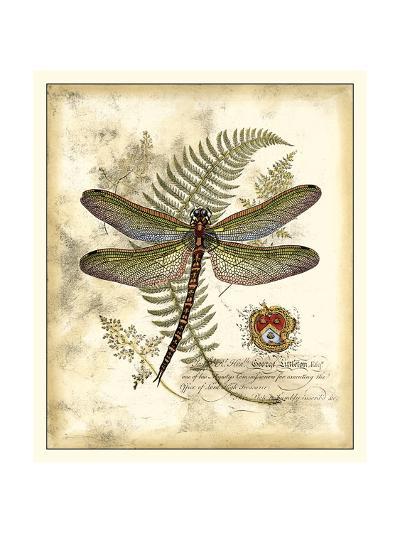 Regal Dragonfly I-Vision Studio-Art Print