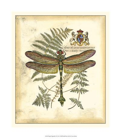 Regal Dragonfly III--Giclee Print