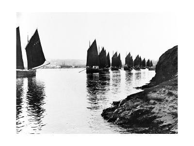 Regatta, Hayle Estuary, C.1890--Photographic Print