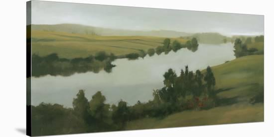 Regeneration-Megan Lightell-Stretched Canvas Print