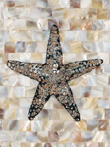 Pearlized Starfish by Regina-Andrew Design