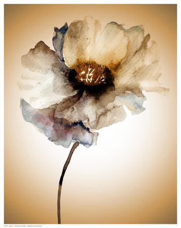 Blossom in Sienna