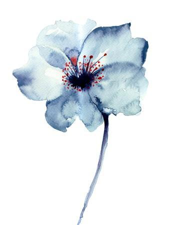 Decorative Blue Flower, Watercolor Illustration