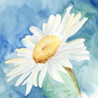 Daisy Sunshine I