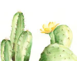 Spiny Desert Plants II by Regina Moore