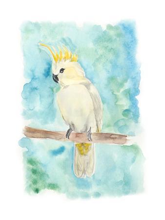 Sweet Tropical Bird II