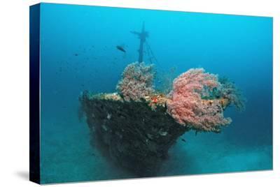 Halaveli Wreck and a Scuba Diver, Maldives.