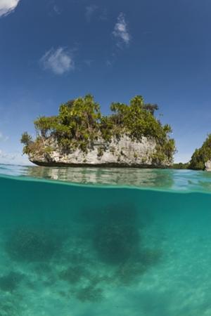 Small Island off Palau, Micronesia by Reinhard Dirscherl