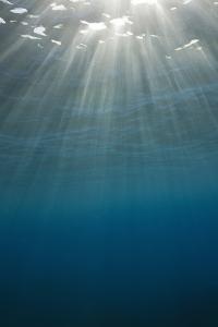 Sunbeams Filtering through the Ocean Surface by Reinhard Dirscherl