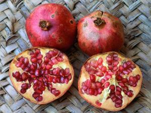 Pomegranate Fruit (Punica Granatum) by Reinhard