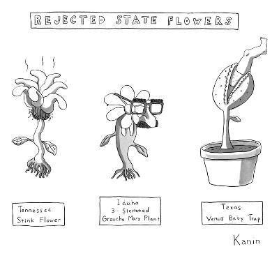 """Rejected State Flowers: Tennessee Stink-Flower; Idaho 3-stemmed Groucho M?"" - New Yorker Cartoon-Zachary Kanin-Premium Giclee Print"