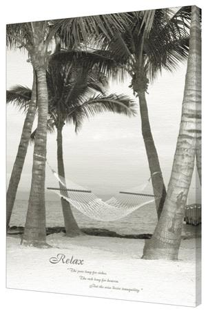 Relax - Palm Tree
