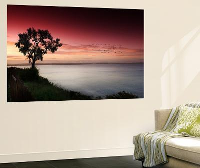 Relaxation Station-Philippe Sainte-Laudy-Wall Mural