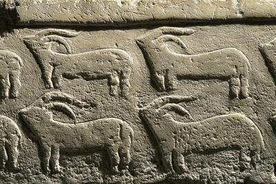 Relief from tarxien temples depicting a procession of animals
