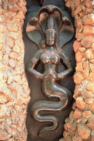 Relief from the Snake Garden--Photographic Print