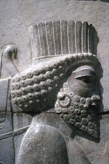 Relief Of A Persian Man The Apadana Persepolis Iran Photographic Print Vivienne Sharp Art Com