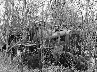 Remains of a 1920S Austin 20Hp Vehicle--Photographic Print