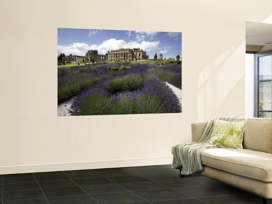Remains of Whitley Court Manor House-Doug McKinlay-Wall Mural