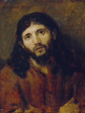 Christ, C.1648/50 (Oil on Oak Panel) by Rembrandt van Rijn