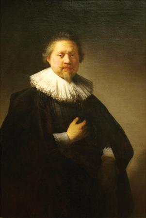 Portrait of a Man in a Lace Ruff Probably of the Berestyn Family by Rembrandt van Rijn