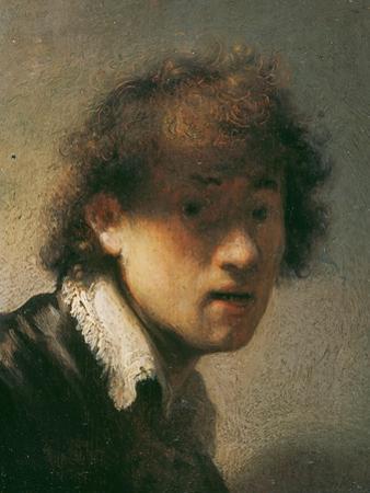 Self Portrait, 1629 by Rembrandt van Rijn
