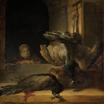 Still Life with Peacocks by Rembrandt van Rijn