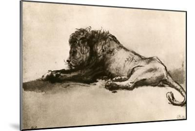 Study of a Lion, 1913 by Rembrandt van Rijn