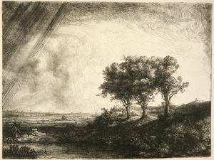 the Three Trees by Rembrandt van Rijn