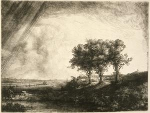 the Three Trees by Rembrandt van Rijn
