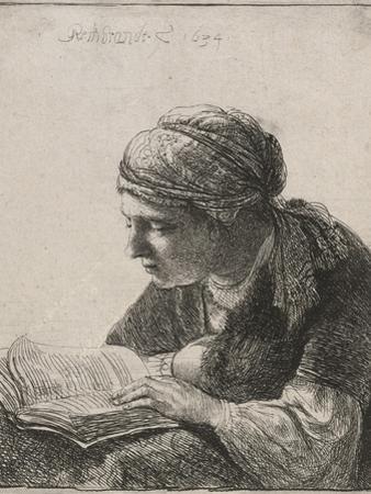 Woman Reading, 1634 by Rembrandt van Rijn