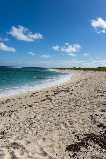 Remote White Sand Beach in Barbuda, Antigua and Barbuda, West Indies, Caribbean, Central America-Michael Runkel-Photographic Print