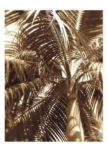 Palm Tree I by Rene Griffith