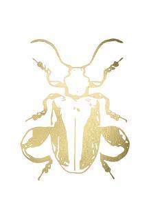 Gold Foil Beetle II by Renée Stramel