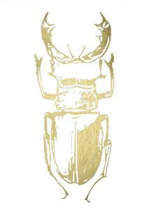 Gold Foil Beetle III by Renée Stramel