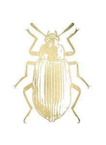 Gold Foil Beetle V by Renée Stramel