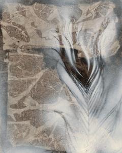 Feather & Stone I by Renee W^ Stramel