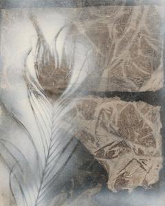 Feather & Stone II by Renee W^ Stramel