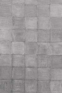 Non-Embellished Grey Scale I by Renee W. Stramel