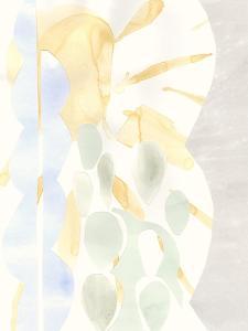 Painted Desert II by Renee W^ Stramel