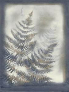 Shadows and Ferns VI by Renee W. Stramel