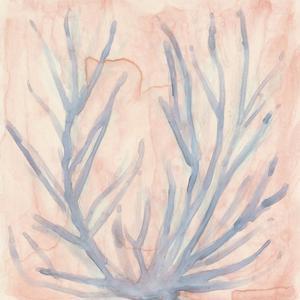Tinted Algae I by Renee W^ Stramel