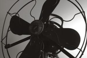 Vintage Fan Study III by Renee W^ Stramel
