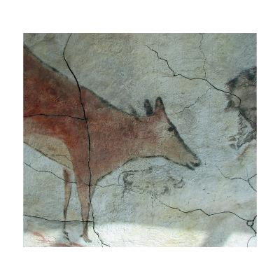 Replica of Cave Painting of Doe from Altamira Cave--Giclee Print
