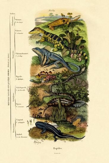 Reptiles, 1833-39--Giclee Print