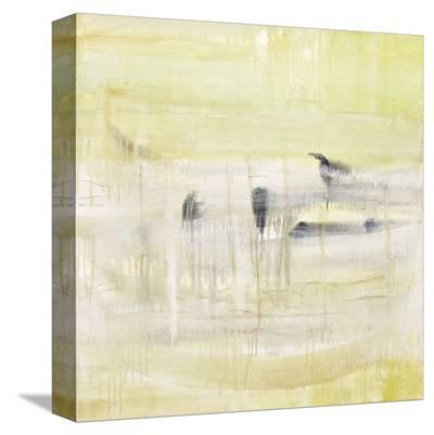 Rest & Perch-Gabriella Lewenz-Stretched Canvas Print