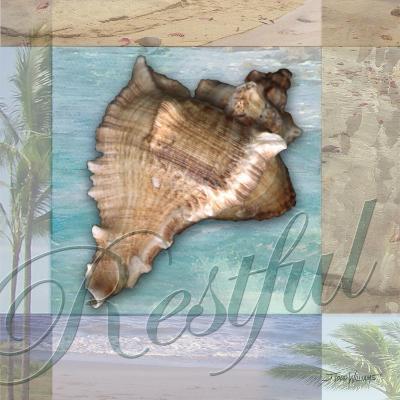 Restful Shell-Todd Williams-Art Print